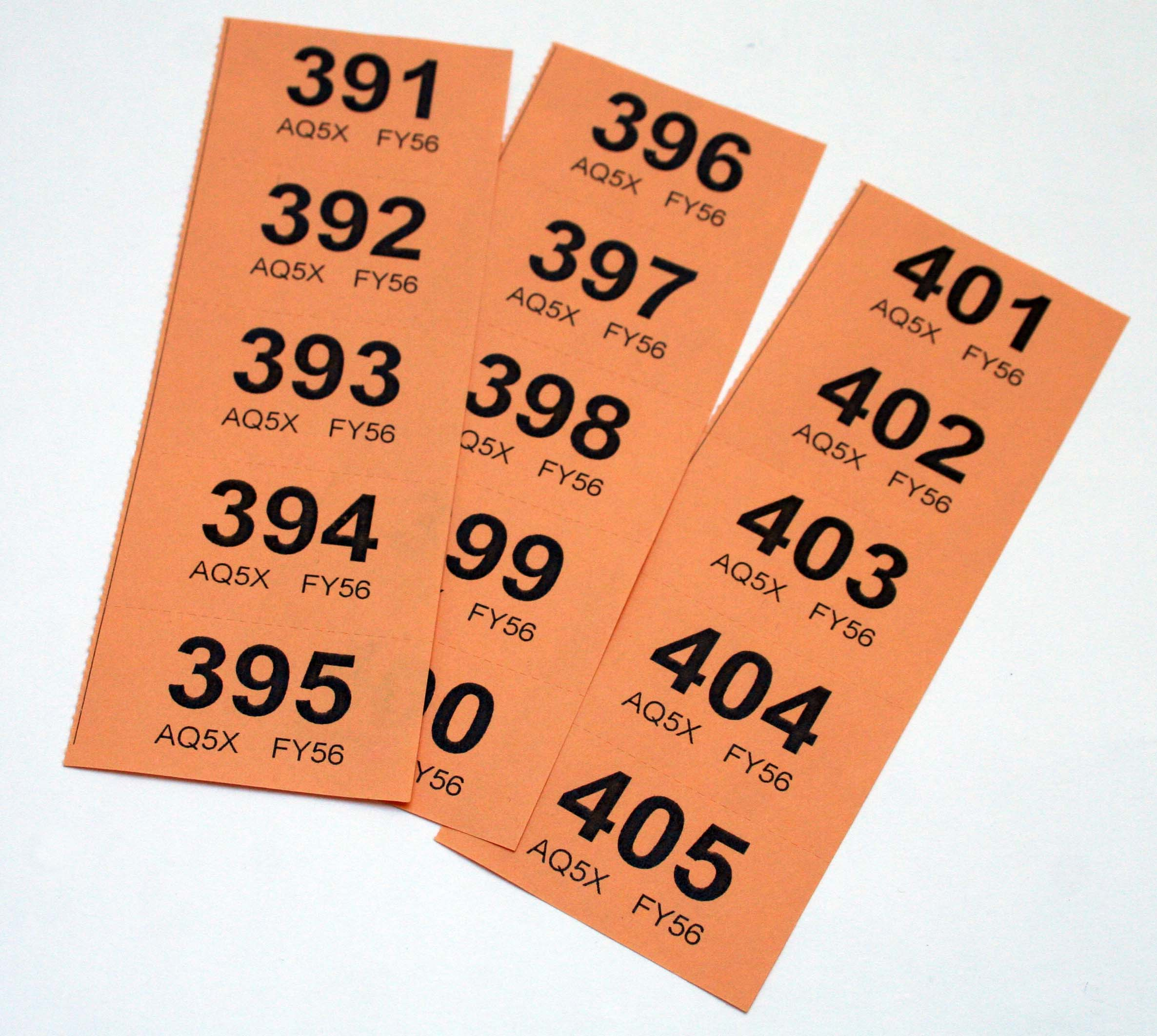 Raffle Tickets New Blog 1